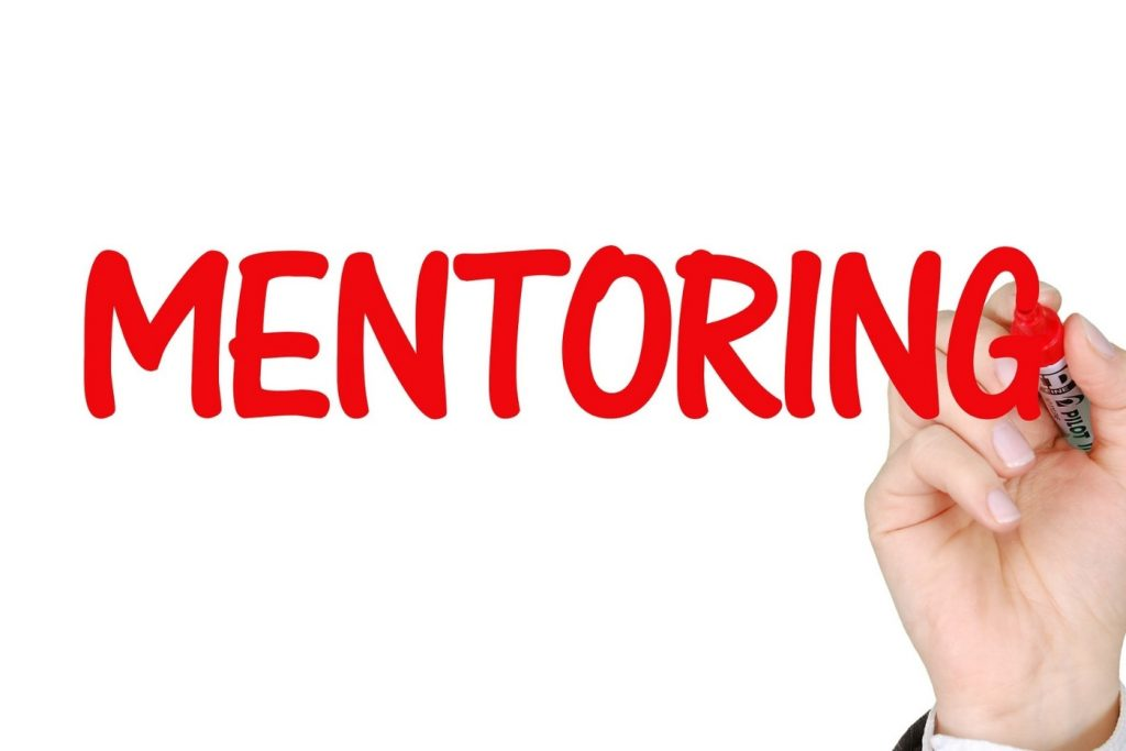 mentoring guidelines for the employer area